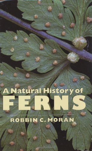9780881926675: A Natural History of Ferns