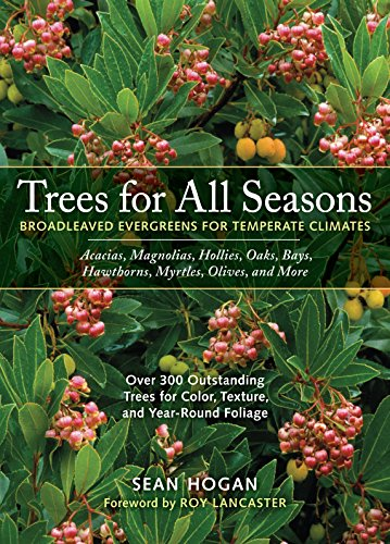 9780881926743: Trees for All Seasons: Broadleaved Evergreens for Temperate Climates