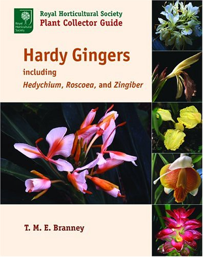 9780881926774: Hardy Gingers: Including Hedychium, Roscoea, And Zingiber