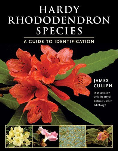 Hardy Rhododendron Species: A Guide to Identification: Cullen, J.