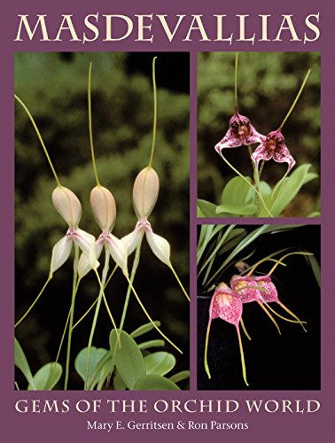Masdevallias: Gems of the Orchid World: Gerritsen, Mary E. and Ron Parsons