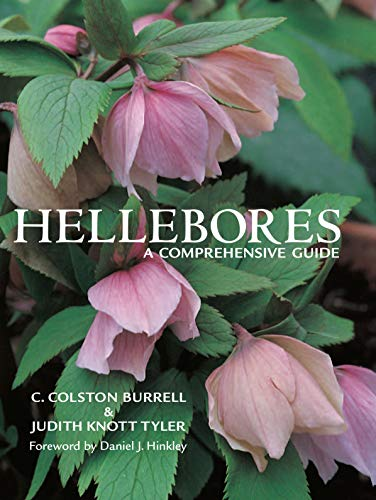 9780881927658: Hellebores: A Comprehensive Guide