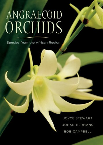 9780881927887: Angraecoid Orchids: Species from the African Region