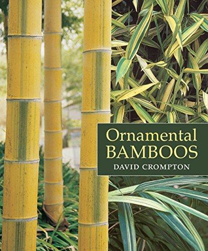 9780881927900: Ornamental Bamboos