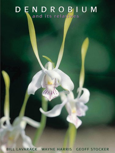 9780881928051: Dendrobium And Its Relatives
