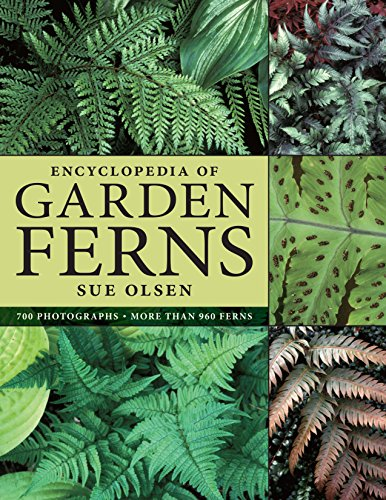 9780881928198: Encyclopedia of Garden Ferns