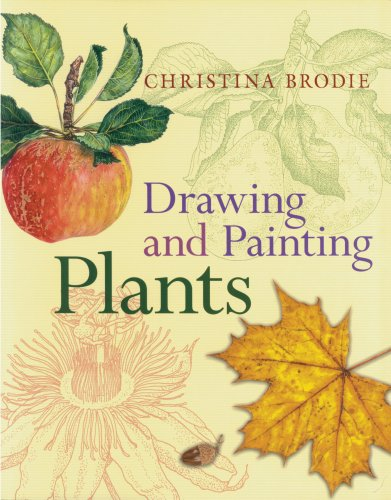 9780881928419: Drawing and Painting Plants