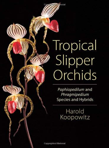 9780881928648: Tropical Slipper Orchids: Paphiopedilum and Phragmipedium Species and Hybrids