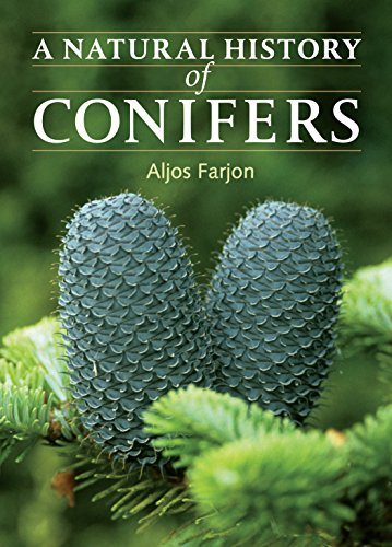 9780881928693: A Natural History of Conifers