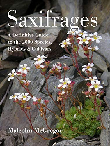 Saxifrages: The Definitive Guide to 2000 Species, Hybrids & Cultivars (0881928801) by Malcolm McGregor