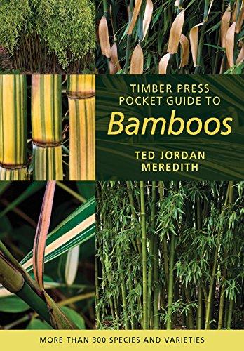 Timber Press Pocket Guide To Bamboos