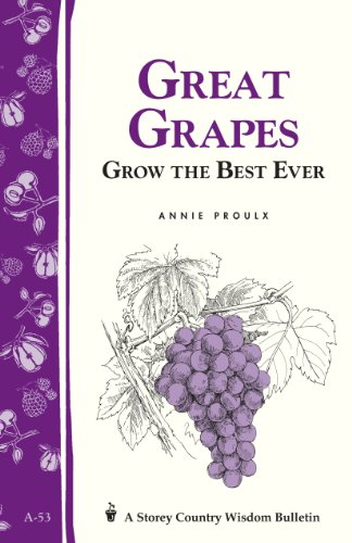 Great Grapes!: Grow the Best Ever (Storey Country Wisdom Bulletin): Annie Proulx