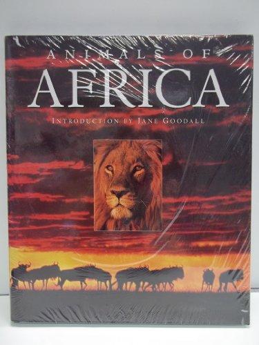 Animals of Africa: Allen, Thomas B.