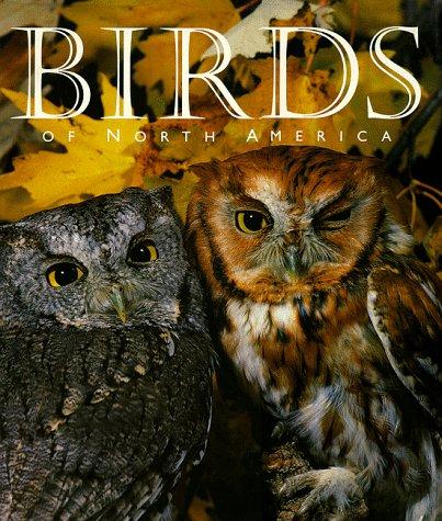 9780883637968: Birds of North America