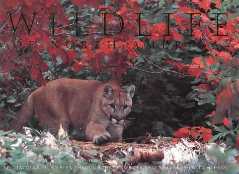 9780883637982: Wildlife of North America