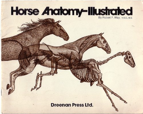 9780883760079: Horse Anatomy - AbeBooks - Robert F. Way: 088376007X