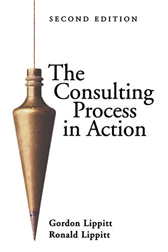 9780883902011: The Consulting Process in Action