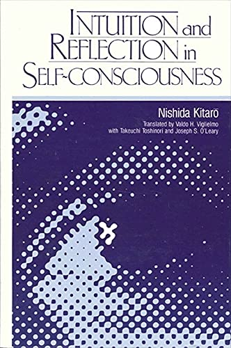 9780887063701: Intuition and Reflection in Self-consciousness (SUNY Series in Philosophy)