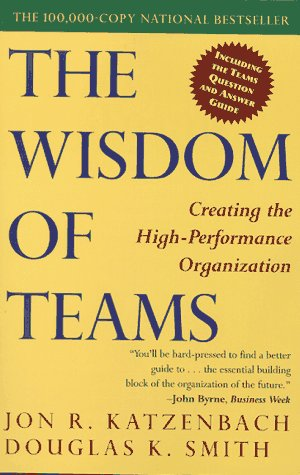 9780887306761: The WISDOM OF TEAMS