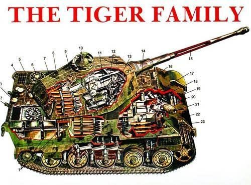 9780887401879: The Tiger Family: Tiger I, Porsche-Tiger, Elephant Pursuit Tank (Ferdinand), Tiger II (King Tiger), Hunting Tiger, Storm Tiger
