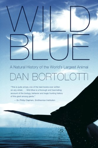 9780887623301: Wild Blue: A Natural History of the World's Largest Animal by Dan Bortolotti (2009-08-01)