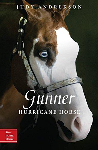 9780887769054: Gunner: Hurricane Horse (True Horse Stories)