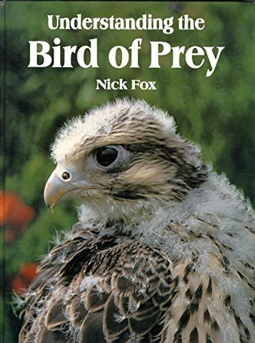 Understanding the Bird of Prey: Fox, Nic