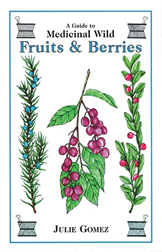 9780888394453: A Guide to Medicinal Wild Fruits and Berries