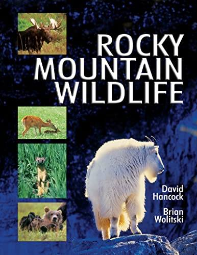 Rocky Mountain Wildlife: Hancock, David; Wolitski, Brian