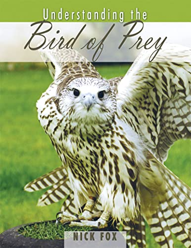 Understanding the bird of prey.