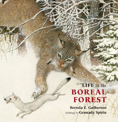 9780888999566: Life in the Boreal Forest