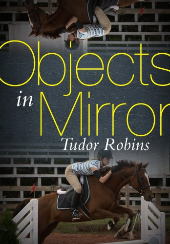 Objects in Mirror: Robins, Tudor