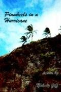 Pinwheels in a Hurricane Ziff, Melody
