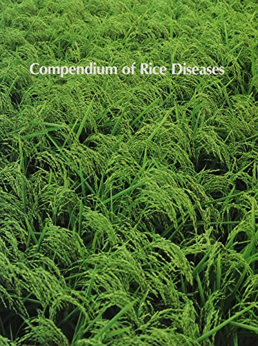 9780890541265: Compendium of Rice Diseases (The Disease compendium series of the American Phytopathological Society)