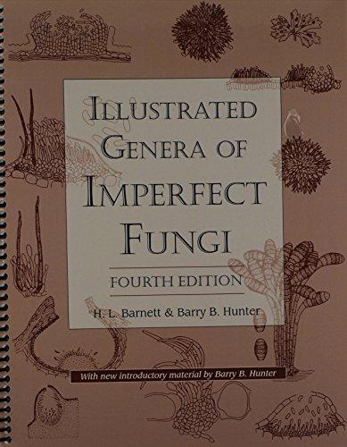 9780890541920: Illustrated Genera of Imperfect Fungi