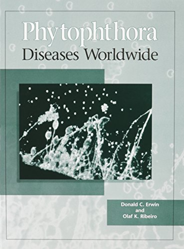 9780890542125: Phytophthora Diseases Worldwide
