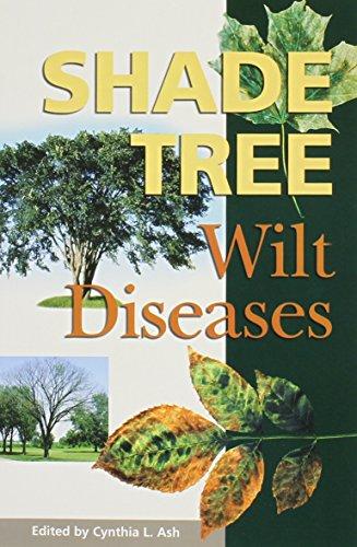 9780890542774: Shade Tree Wilt Diseases: Wilt Diseases
