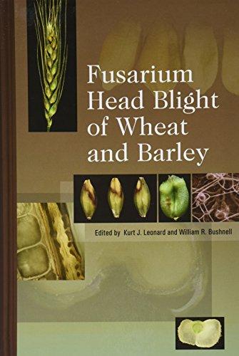 9780890543023: Fusarium Head Blight of Wheat and Barley