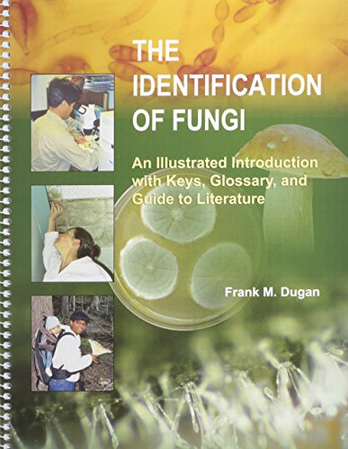 9780890543368: The Identification of Fungi: An Illustrated Introduction With Keys, Glossary, And Guide to Literature