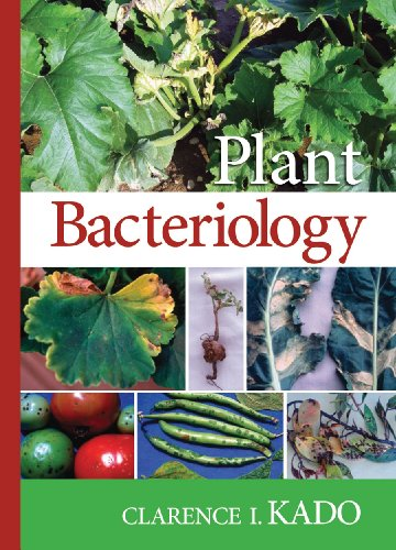 9780890543887: Plant Bacteriology