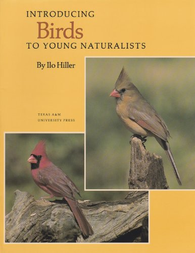 9780890964101: Introducing Birds to Young Naturalists: From Texas Parks and Wildlife Magazine (Louise Lindsey Merrick Natural Environment Series)