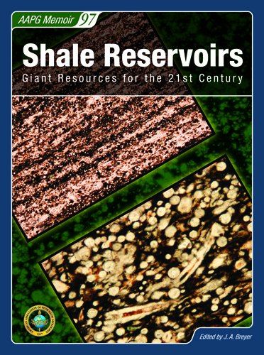 Shale Reservoirs: Giant Resources for the 21st Century (Aapg Memoir): J. A. Breyer