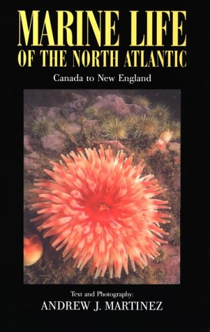 9780892724550: Marine Life of the North Atlantic : Canada to New England 2n Ed.