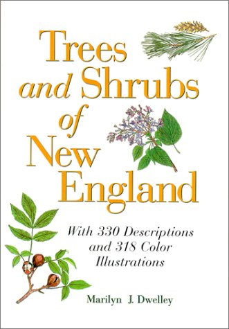 9780892724918: Trees and Shrubs of New England
