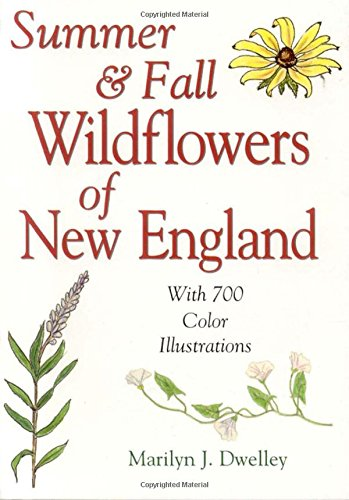 9780892725595: Summer & Fall Wildflowers of New England