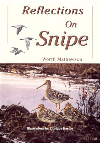 Reflections on Snipe: Mathewson, Worth