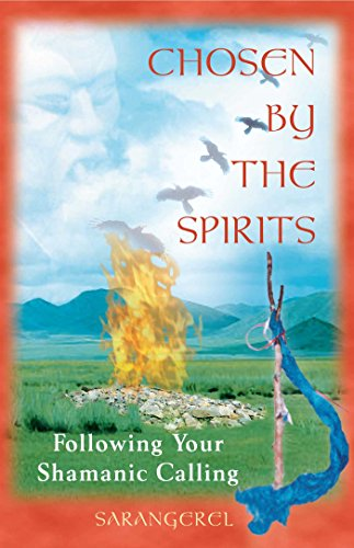 9780892818617: Chosen by the Spirit: Following Your Shamanic Calling