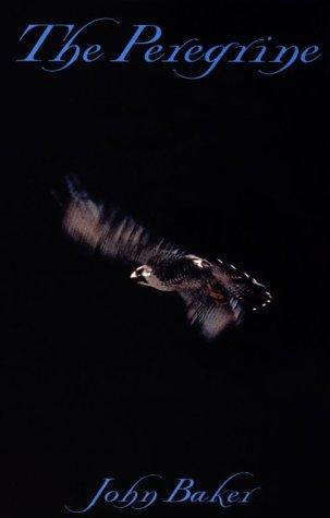 9780893011154: The Peregrine
