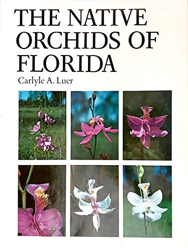 9780893270148: The Native Orchids of Florida