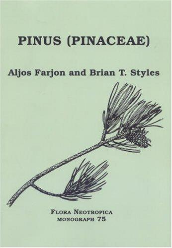9780893274740: Pinus (Pinaceae) (Flora Neotropica, Volume 75)